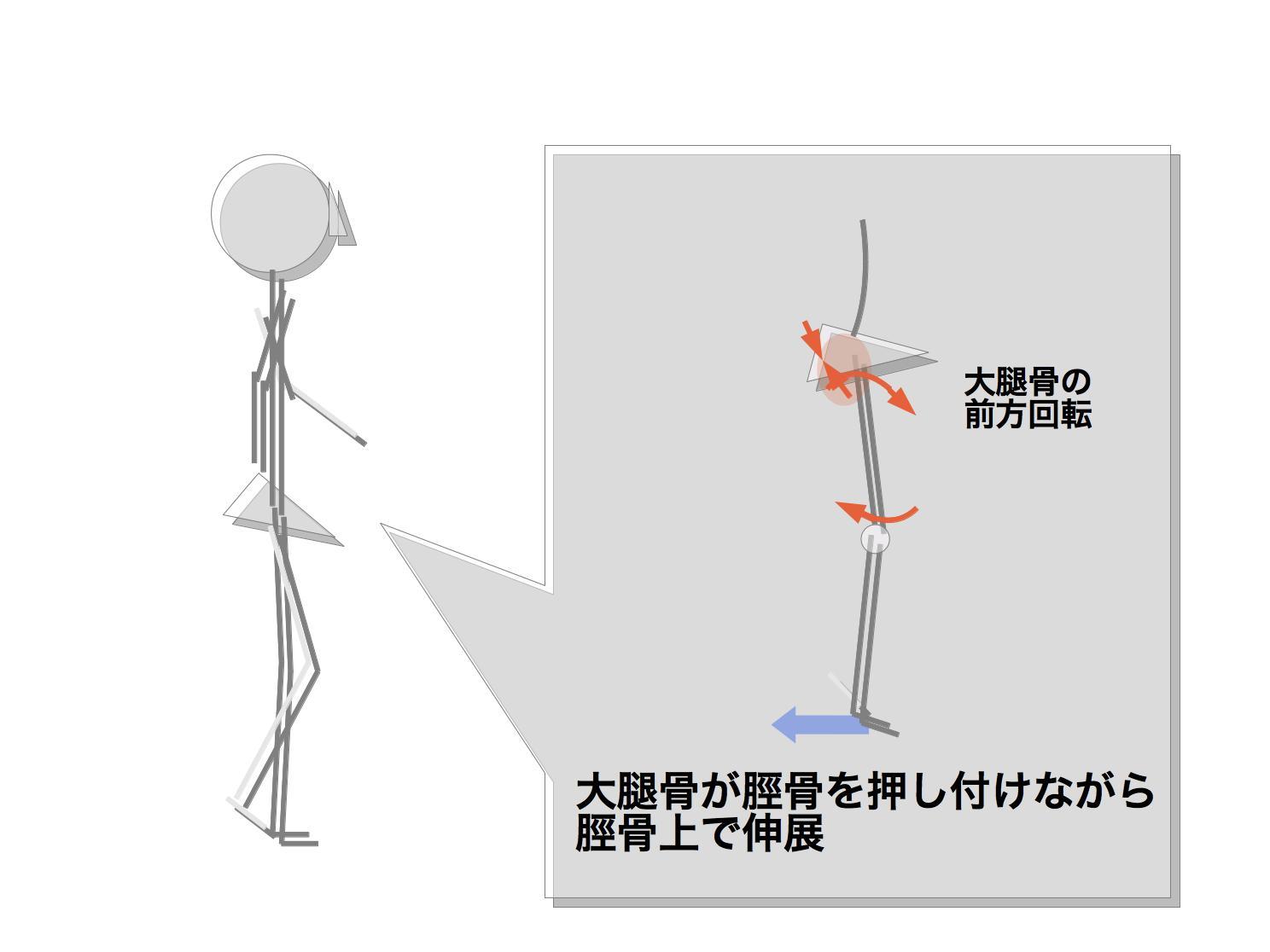 人間の画像3