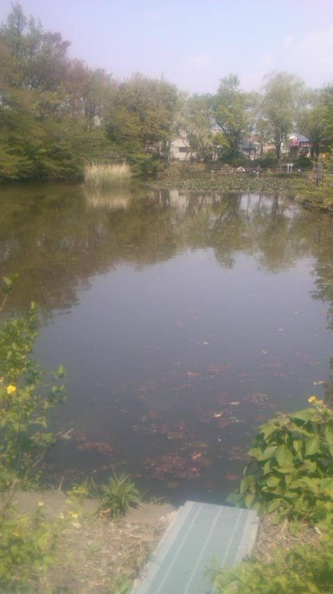 yokohama201304_2.jpg