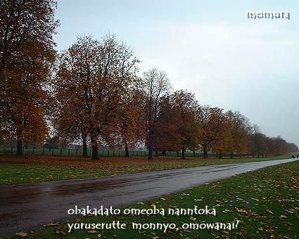 longwalk.jpg