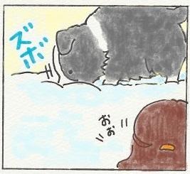 雪デビュー4