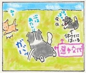 走るボーダーガール5