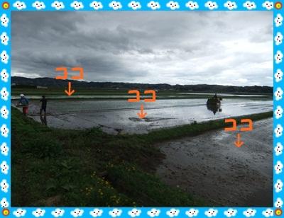 DSCF0129-20120504.jpg