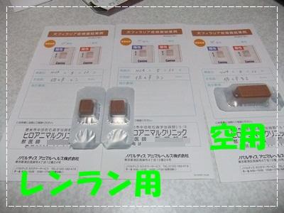DSCF0203-20120512.jpg