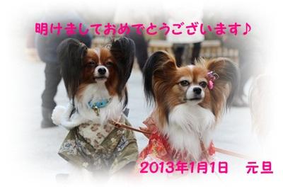 IMG_2323-20130101.jpg