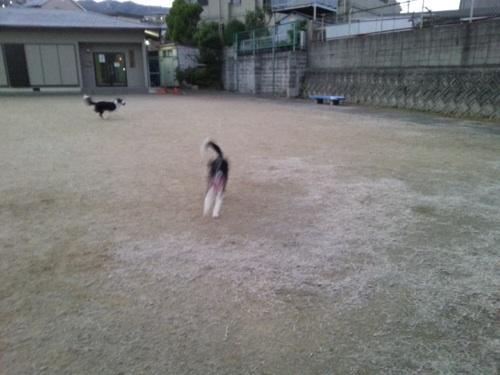 fc2blog_20140106073607862.jpg