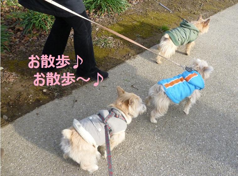 14_20130112075710.jpg