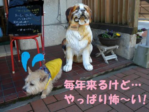 2_20130106231940.jpg
