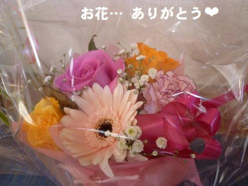 hana_20121220112924.jpg