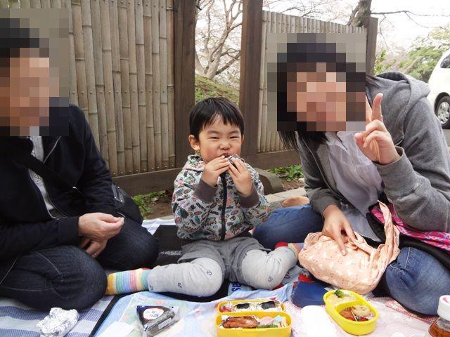 伏姫桜の前でピクニック