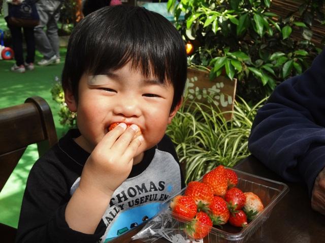 イチゴをぱくっと