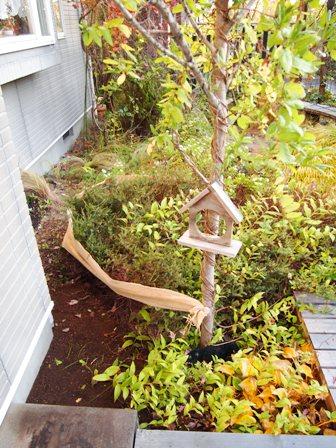 my-garden 009 (5)