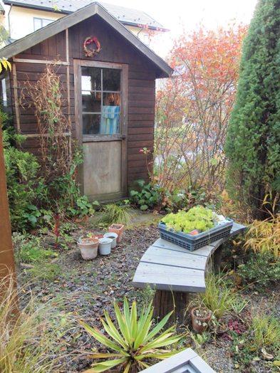 my-garden 125
