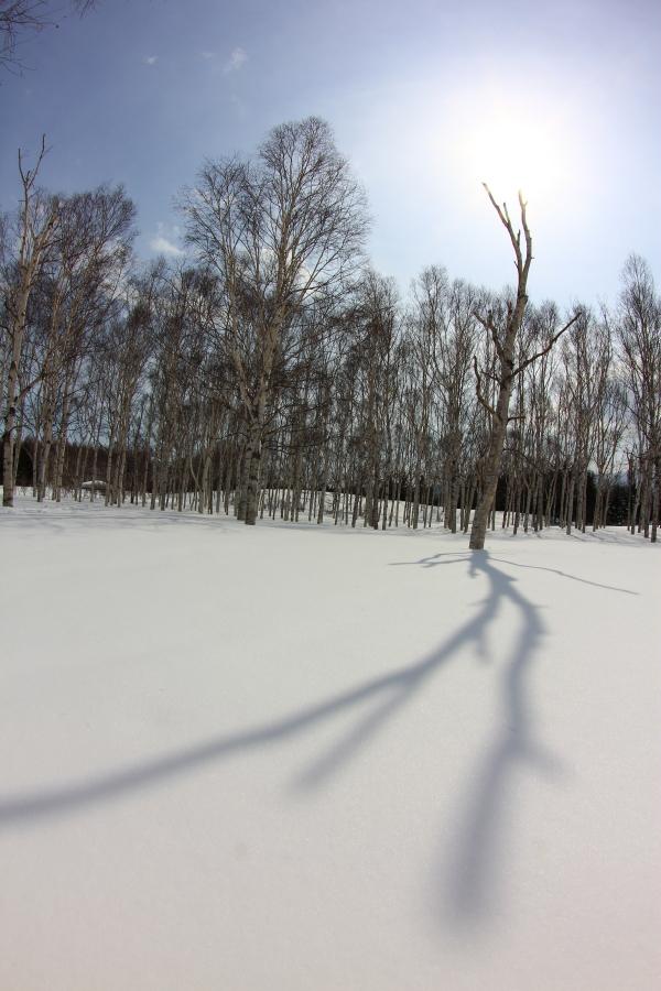 130317-前田森林公園091