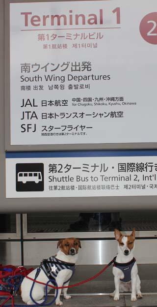 2013_4_5_羽田空港5