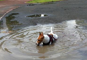 水溜り遊び2