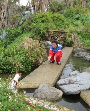 2013_4_6_美ら海水族館5