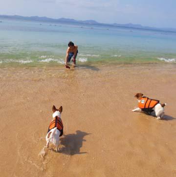 2013_4_8_沖縄大泊ビーチ3
