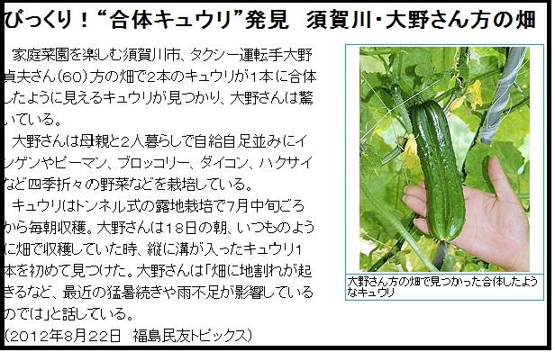 奇形植物2