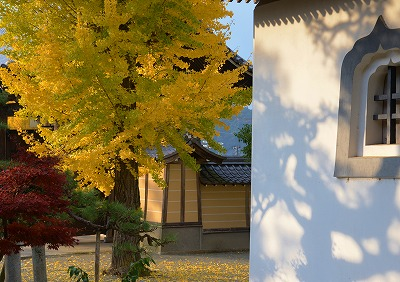 安芸高田の秋3
