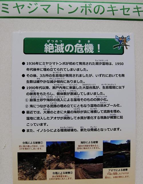 広島湾再生 6