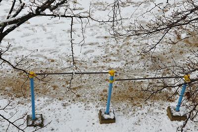 雪の朝 6