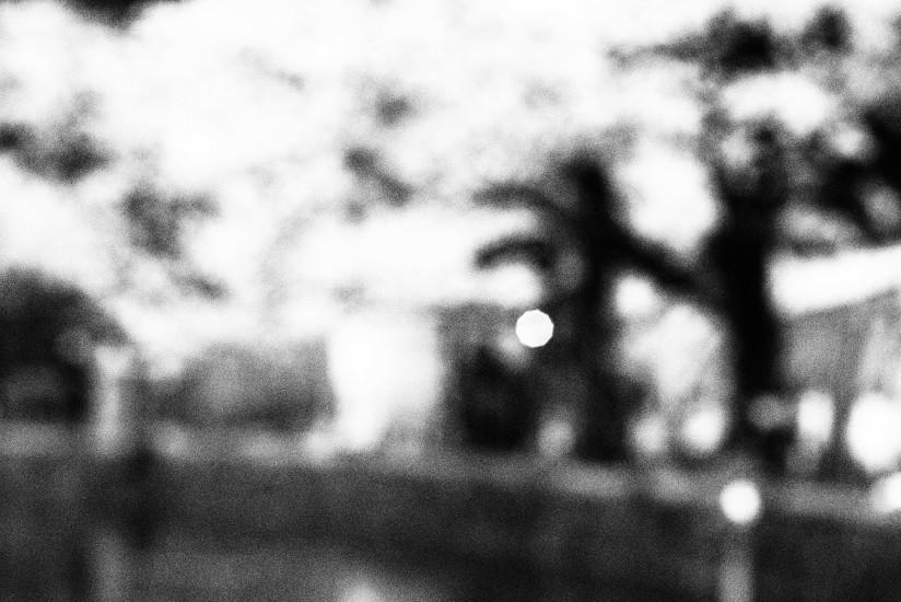 【PhotoTable】桜モノクロ(東京の桜を撮る)