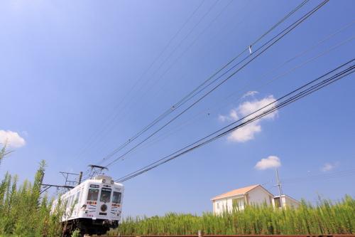 2009年9月 和歌山電鐵貴志川線 伊太祈曽~山東