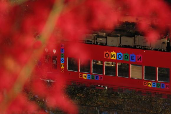 2014/11/30 和歌山電鐵貴志川線 大池遊園