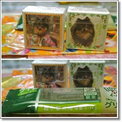 cats10_20121014125339.jpg