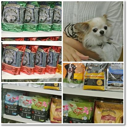 cats5_20121008182206.jpg