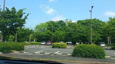 初夏の駐車場(笑)