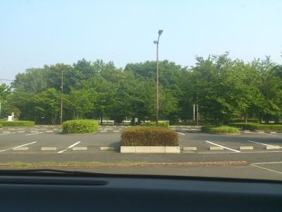 暑そうな駐車場