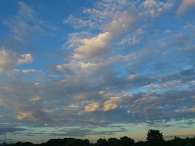 秋っぽい雲になってきた