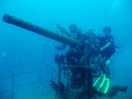 タイ タオ島 ダイビング 沈船
