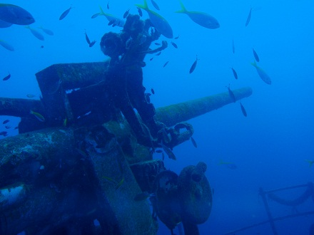 タオ島 ダイビング レック