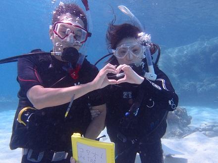 タオ島 ダイビング ダイバー