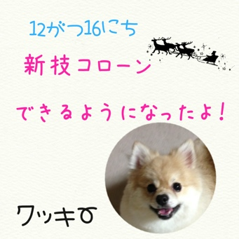 fc2blog_20131216171654ac5.jpg
