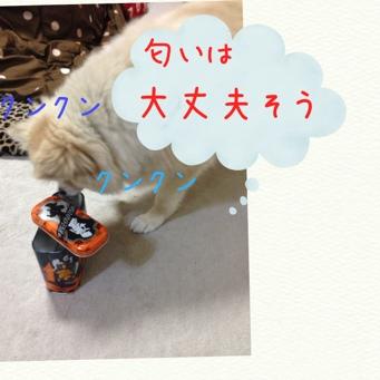 fc2blog_20131220165526278.jpg