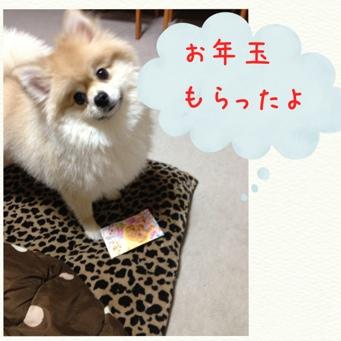 fc2blog_20140101204805d65.jpg