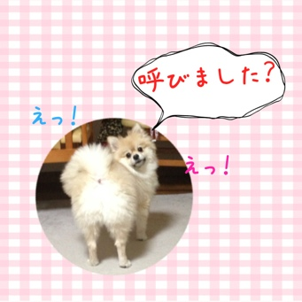 fc2blog_201401122103084f9.jpg