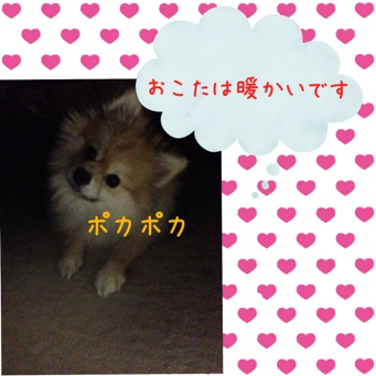 fc2blog_2014011519254480d.jpg