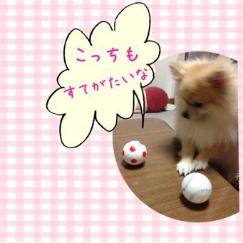 fc2blog_20140128205712adc.jpg