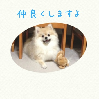 fc2blog_20140202214610e1f.jpg