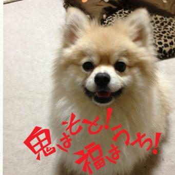 fc2blog_201402032117119e9.jpg