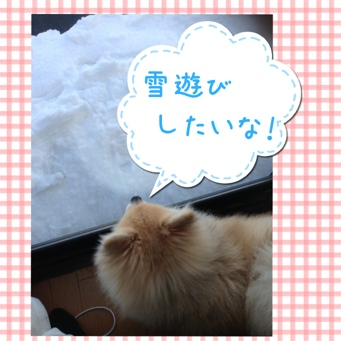 fc2blog_201402091812313bd.jpg