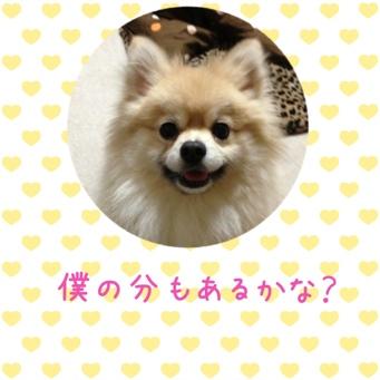 fc2blog_20140213225719d3e.jpg
