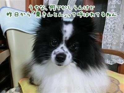 130320_01.jpg