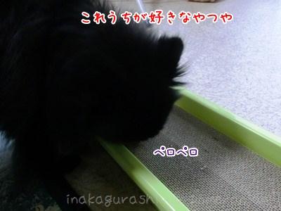 130401_07.jpg