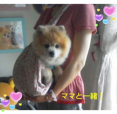 fc2blog_20120726220843ed8.jpg