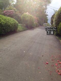 gw散歩3